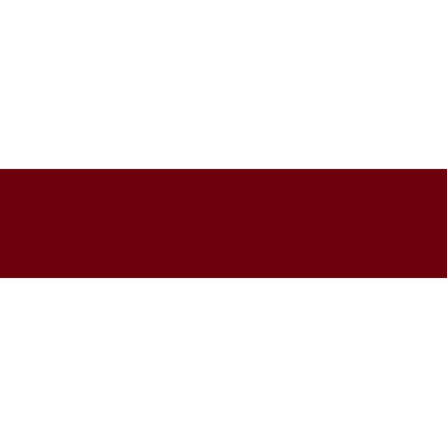 Sizzlers_SIZ_Logo_Maroon_box